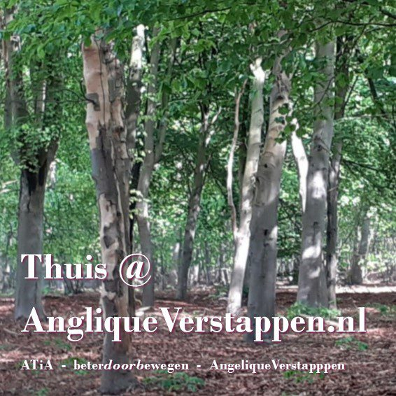 AngeliqueVerstappen.nl